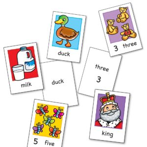 Flashcard Contents
