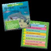 BrainBox-Predators-Cards